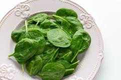 Młodzi liście szpinaki na talerzu kosmos kopii Detox, żywienioniowy karmowy składnik - zielony organicznie szpinak obrazy royalty free