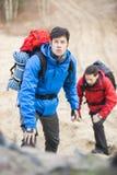 Młodzi męscy backpackers wycieczkuje w lesie Fotografia Stock