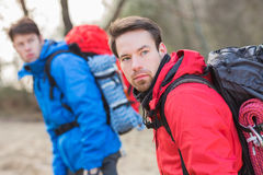 Młodzi męscy wycieczkowicze patrzeje daleko od w lesie Fotografia Stock