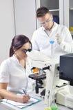 Młodzi medyczni naukowowie studiuje nową substancję lub wirusa w mikroskopie Zdjęcia Stock