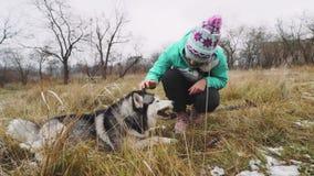 Młodzi piękni kobieta spacery, sztuki z jej husky psem przy zimą wokoło lasu i zbiory wideo