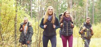 Młodzi szczęśliwi przyjaciele chodzi w lesie i cieszy się dobrą jesień obraz royalty free
