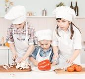 Młodzi szefa kuchni narządzania warzywa w kuchni Obraz Stock
