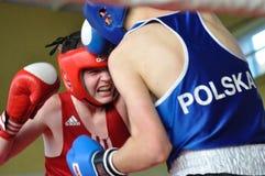 Młodzieżowy bokserski turniej Fotografia Royalty Free