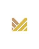 M标注姓名起首字母象5财政业务保险摘要 免版税库存照片