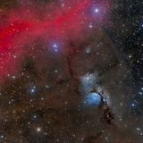 M78在猎户星座的反射星云 库存图片