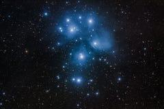 M45 - 在金牛座的Pleiades群 免版税库存图片