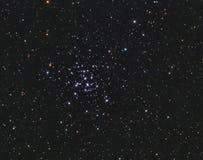 M36打开在御夫星座的群 免版税图库摄影
