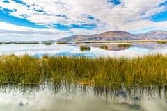 的喀喀湖,南美,位于秘鲁和玻利维亚的边界。它坐在海平面上的3,812 m 库存图片