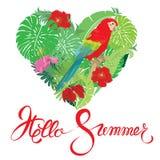 与心脏形状、棕榈树叶子和红色蓝色M的季节性卡片 免版税库存图片