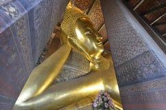 46m Buddha adagiantesi lungo Fotografie Stock