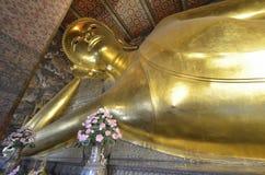 46m Buddha adagiantesi lungo Immagine Stock
