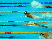 200m Butterfly PanPacs 2014 royalty free stock photo