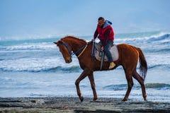 M??czyzna jazda na br?zu galopuj?cym koniu na Ayia Erini pla?y w Cypr przeciw szorstkiemu morzu obraz stock