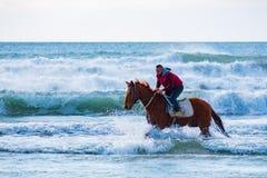 M??czyzna jazda na br?zu galopuj?cym koniu w wodach morskich Ayia Erini pla?a w Cypr przeciw szorstkiemu morzu obrazy royalty free