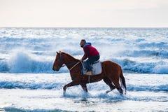 M??czyzna jazda na br?zu galopuj?cym koniu w wodach morskich Ayia Erini pla?a w Cypr przeciw szorstkiemu morzu obrazy stock