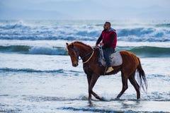 M??czyzna jazda na br?zu galopuj?cym koniu w wodach morskich Ayia Erini pla?a w Cypr przeciw szorstkiemu morzu zdjęcia stock