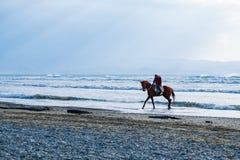 M??czyzna jazda na br?zu galopuj?cym koniu w wodach morskich Ayia Erini pla?a w Cypr przeciw szorstkiemu morzu obraz royalty free