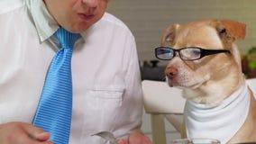M??czyzna z psem przy sto?em je Przyja?? m??czyzna i zwierz? domowe Biznesmena poj?cie zbiory wideo