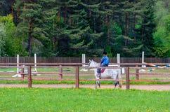 M?dchen, das ein Pferd reitet In den Händen des Haltens des Telefons lizenzfreie stockfotografie