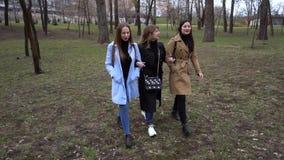 M?dchenhafte Freundschaft Drei junge sch?ne M?dchen gehen in den Stadtpark Sie sind gl?cklich M?dchen sind gl?cklich sich zu tref stock video