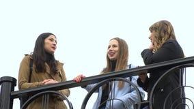 M?dchenhafte Freundschaft Drei junge sch?ne M?dchen plaudern auf der Stra?e Sie sind gl?cklich M?dchen sind gl?cklich sich zu tre stock footage