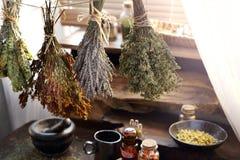 M?decine de Herbal de Herbalist et m?decine naturelle Rem?des de fines herbes traditionnels photos stock