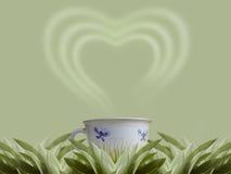 mądra herbaty. Zdjęcie Royalty Free