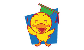 M. Duck Image stock