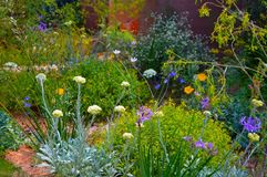 M & G show garden Chelsea Flower Show. The M & G Show Garden at the RHS Chelsea Flower Show in London May 2018. Designed by Sarah Price it shows hard landscaping stock photo