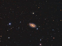 M109 Galaxy. Imaged with a telescope and a scientific CCD camera stock photos