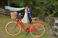 Mąż i żona całujemy na ich dniu ślubu outdoors Obraz Stock