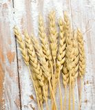 Mąka i banatka Fotografia Stock