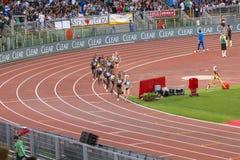 10000m kvinnalopp Fotografering för Bildbyråer