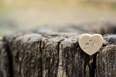 M?lancolie de peine de tristesse de beaut? d'amour de coeur images stock