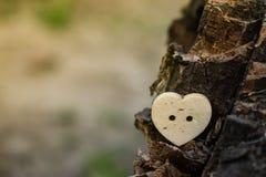 M?lancolie de peine de tristesse de beaut? d'amour de coeur image stock