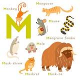 M letter animals set. English alphabet Royalty Free Stock Image