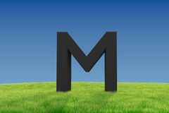 M letter on Grassland Stock Photos