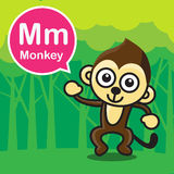 M Monkey color cartoon and alphabet for children to learning vec Stock Image