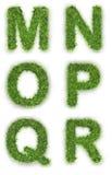 M, n, o, p, q, r dat van groen gras wordt gemaakt Royalty-vrije Stock Fotografie
