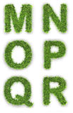 M,n,o,p,q,r made of green grass stock illustration