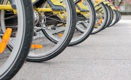 M?nga cyklar som parkeras p? parkeringen royaltyfria bilder