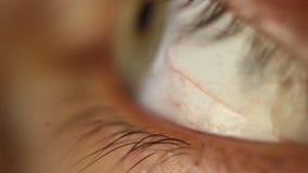 M?nnliche Augennahaufnahme Blinkens, die herum schaut Rote Arterie auf dem Augapfelmakro Pupillereaktion zu beleuchten Mioz und M stock footage
