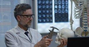 M?nnlicher Doktor, der menschliches Skelettmodell analysiert stock video footage