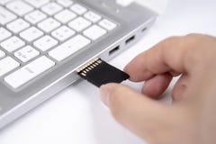M?nsklig hand som pluggar i ett SD-massmediakort in i den personliga b?rbar datordatoren p? vit bakgrund arkivfoton