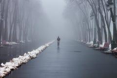 Młoda dziewczyna bieg w mglistym parku Obrazy Stock