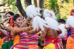 Młoda dziewczyna tancerzy perforimg przy Holi festiwalem w Kolkata (wiosna) Zdjęcia Stock