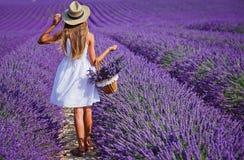 Młoda dziewczyna w lavander polach Zdjęcie Stock