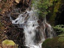 Młoda halna rzeka Zdjęcie Stock