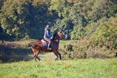Młoda kobieta jedzie konia w otwartym polu Obrazy Royalty Free